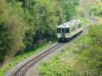 新緑の小海線を行くキハ110系