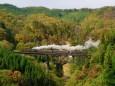 紅葉の鉄橋を行くSL C11