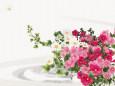 サフィニアの花束