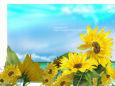 イラスト 絵画 向日葵と夏の空 壁紙19x1344 壁紙館