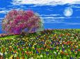 色鮮やかな水仙の絨毯