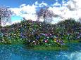 色彩豊かな花の大群生
