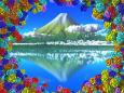 多彩色な紫陽花と冠雪の山