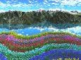 虹形のチューリップ
