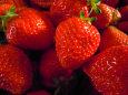 まっ赤な苺