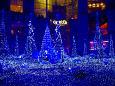 カノンダジュール 青い精霊の森