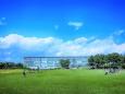 初夏の葛西臨海公園
