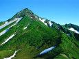登山道から利尻山山頂を望む