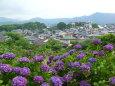 日本の風景 里山からの梅雨景色 壁紙1920x1440 壁紙館
