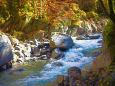 渓谷の秋・西沢渓谷