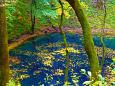 秋の十二湖 青池