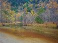 上高地の秋 田代池