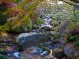 渓谷の秋 花貫渓谷