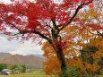里山の秋ツー