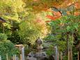 常念寺・本坊庭園