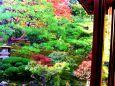 比叡山坂本 旧竹林院P(3)
