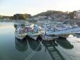 新年の漁港