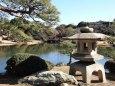 新宿御苑上の池