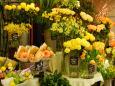 お花屋さんの黄色い花