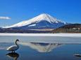 水温む山中湖