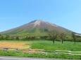 大山-新緑の季節