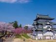 弘前城と岩木山と桜