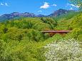 八ヶ岳と赤い橋・東沢大橋