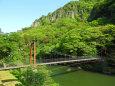 立久恵峡-新緑9