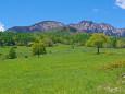 八ヶ岳牧場から 八ヶ岳の山並み