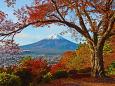 日本の風景 秋の富士山 壁紙1920x1280 壁紙館