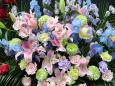 花 植物 フラワーアレンジメント 壁紙1920x1440 壁紙館