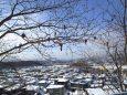 都市 街 室内 冬の札幌 壁紙1920x1440 壁紙館