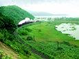 釧路湿原を行く