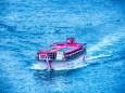 屋形船とカワウ
